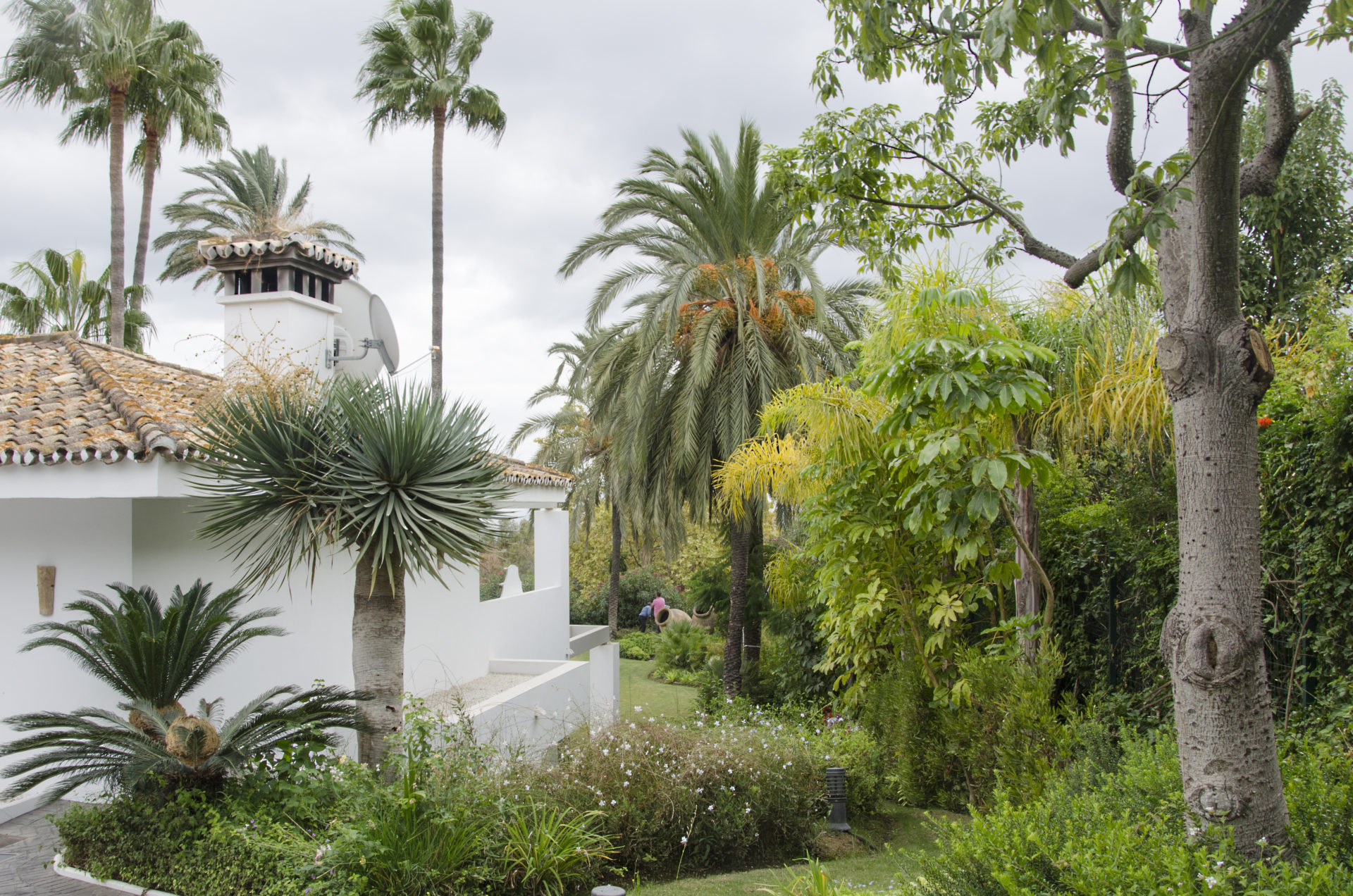 Jardín en la Las Lomas de Marbella club