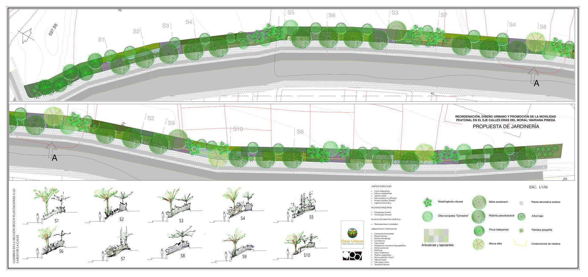 Proyecto jardinería pública