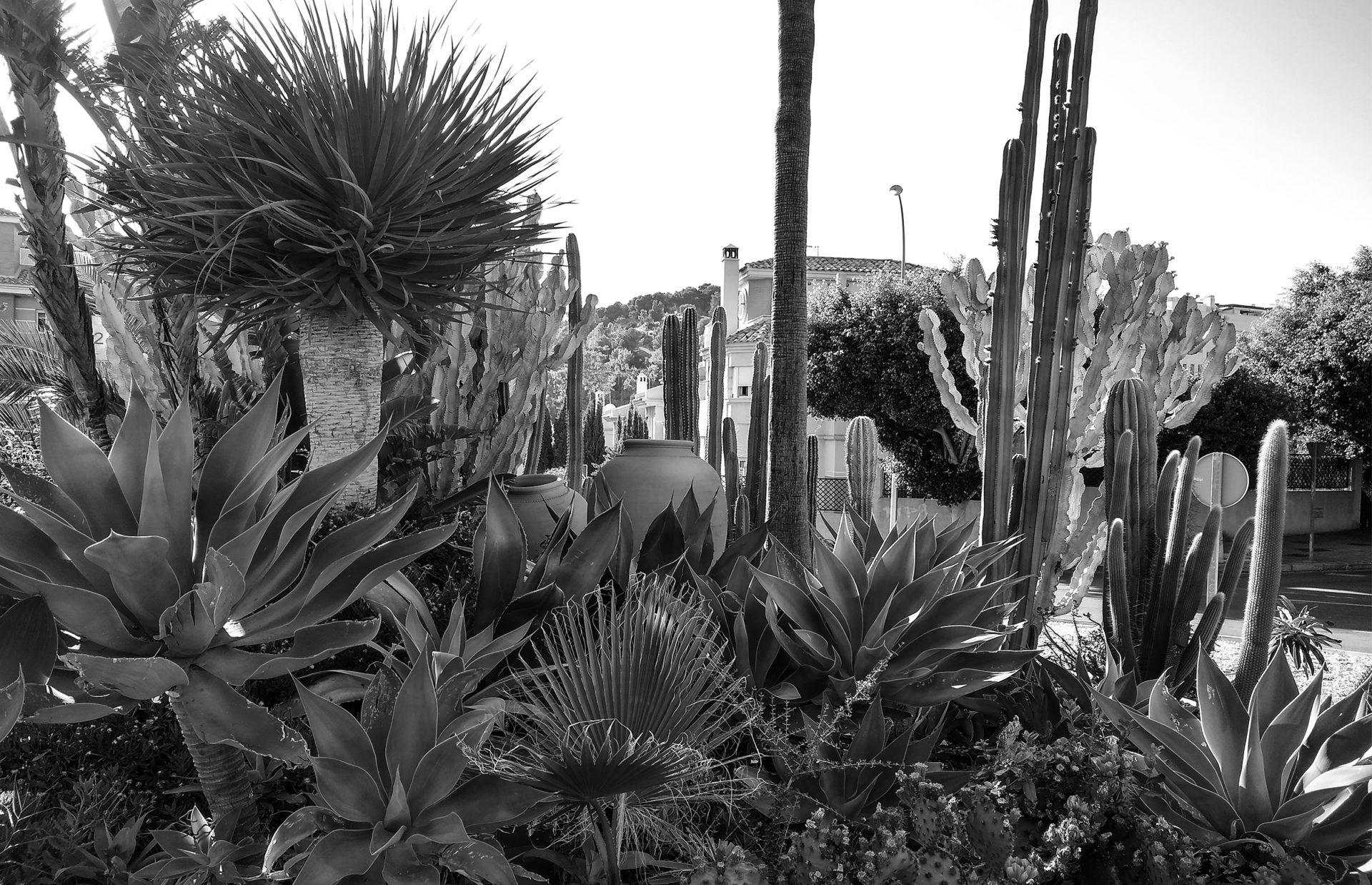 Jardín rotonda Parque Clavero Málaga